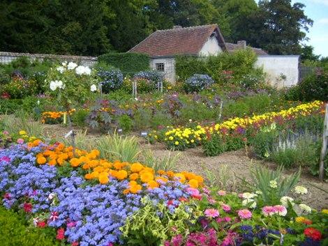 выращивание и продажа цветов в частном доме