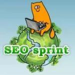 Как заработать на сервисе Seosprint