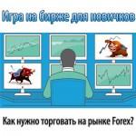 Как нужно торговать на рынке Forex (форекс) и с чего начать игру на бирже трейдеру-новичку