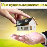 Как купить недвижимость? Информация инвестору