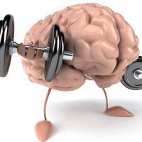 Тренировка памяти или как прокачать свой мозг