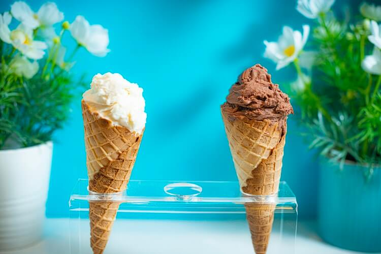 Мягкое мороженое – что это такое
