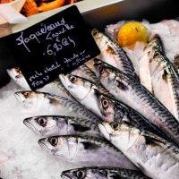 Рыбный магазин как бизнес - как запустить проект с нуля